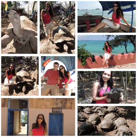 Prison Island and the Alabra Giant Tortoise Sanctuary